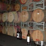 Tertini Winery tasting